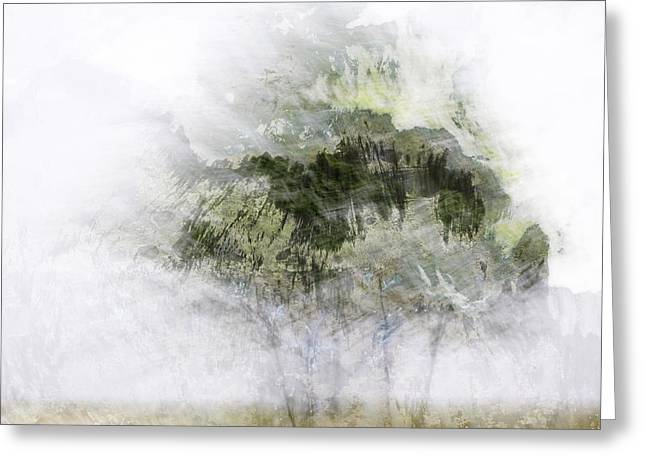 Blurred Motion Greeting Cards - Trees Within Trees Greeting Card by Carol Leigh