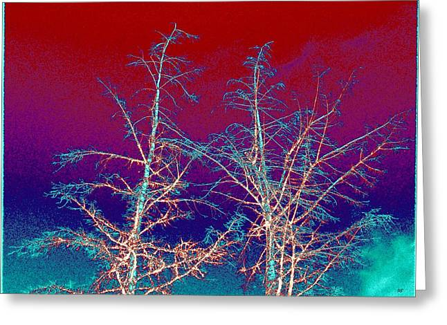Will Borden Greeting Cards - Treetops 4 Greeting Card by Will Borden