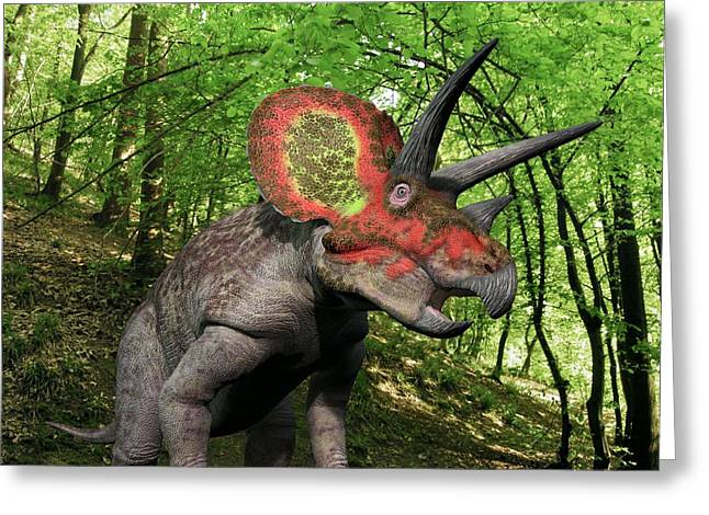 Triceratops Greeting Cards - Triceratops Dinosaur, Artwork Greeting Card by Walter Myers