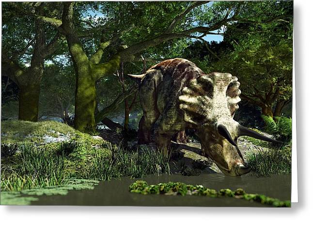 Triceratops Greeting Cards - Triceratops Drinking At A Pond, Artwork Greeting Card by Roger Harris