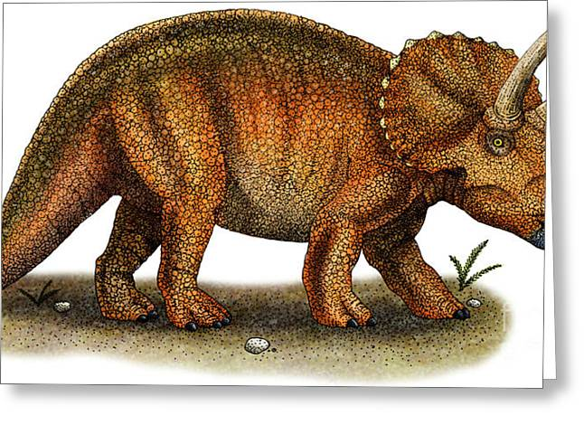 Triceratops Greeting Card by Roger Hall and Photo Researchers