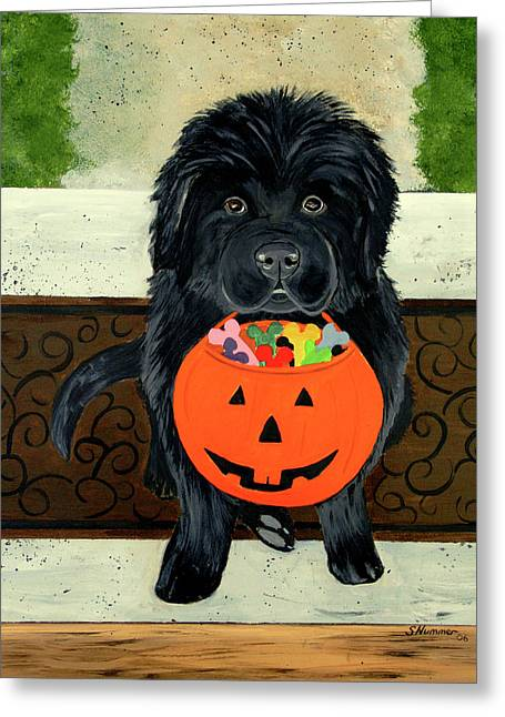 Newfoundland Puppy Greeting Cards - Trick Or Treat Greeting Card by Sharon Nummer