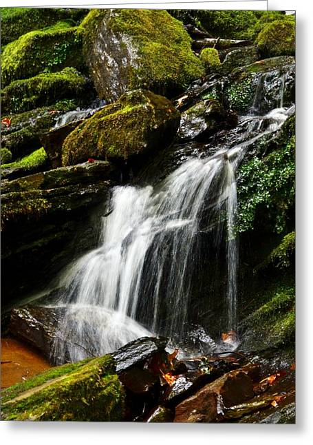 Trickle Trickle Greeting Card by Love Photography By Mandy