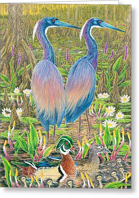 Water Lilly Drawings Greeting Cards - Tricolored Herons with Wood Ducks Greeting Card by Tim McCarthy