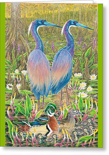 Tricolored Herons With Wood Ducks Greeting Card by Tim McCarthy