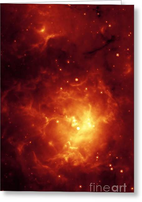 Astrophysical Greeting Cards - Trifid Nebula Greeting Card by NASA / Science Source