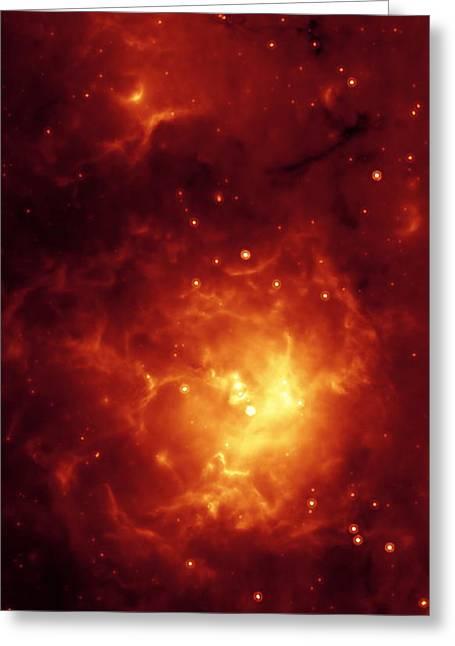 Stellar Formation Greeting Cards - Trifid Nebula Greeting Card by Nasa