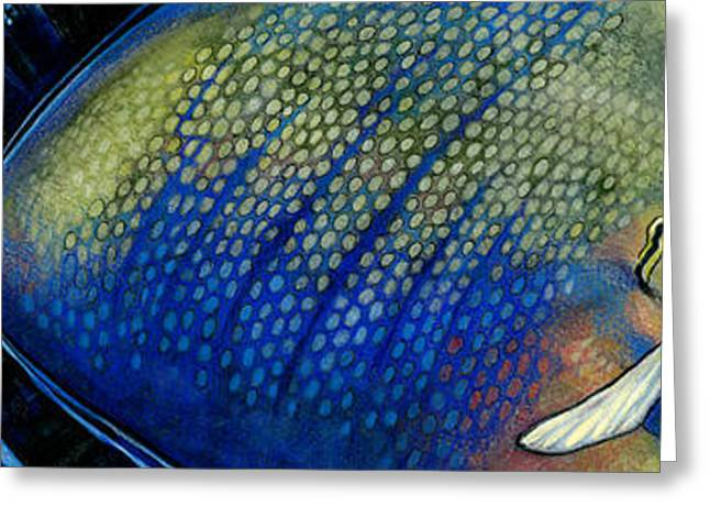 Triggerfish Paintings Greeting Cards - Triggerfish Greeting Card by Alyssa Parsons