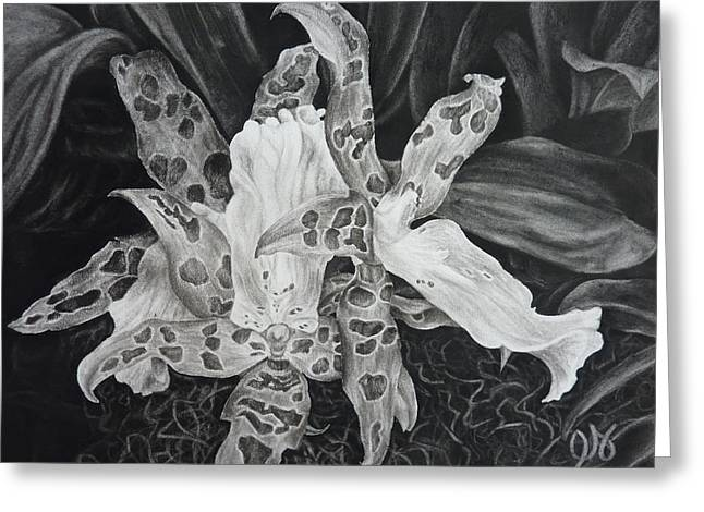 Triple Orchid Blossom Greeting Card by Estephy Sabin Figueroa