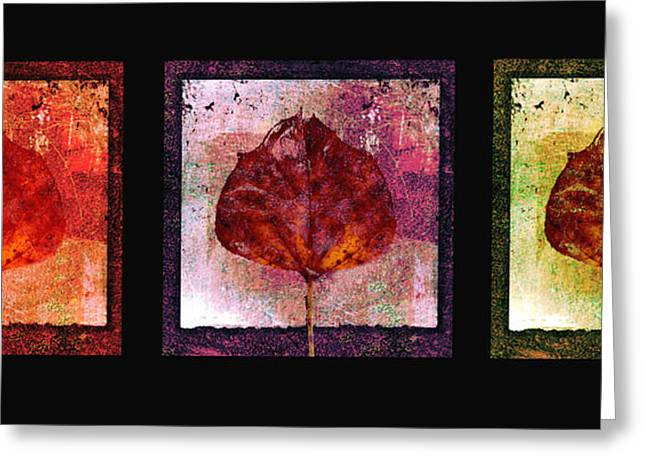 Bold Contrast Greeting Cards - Triptych Leaves  Greeting Card by Ann Powell