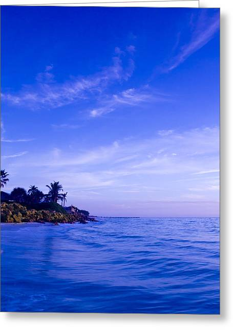 Tampa Greeting Cards - Tropic Shore of the Gulf Greeting Card by Nicholas Evans