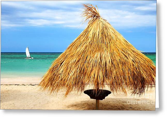 Umbrella Greeting Cards - Tropical beach Greeting Card by Elena Elisseeva