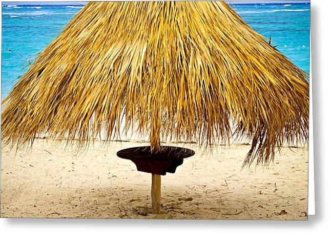 Tropical beach umbrella Greeting Card by Elena Elisseeva