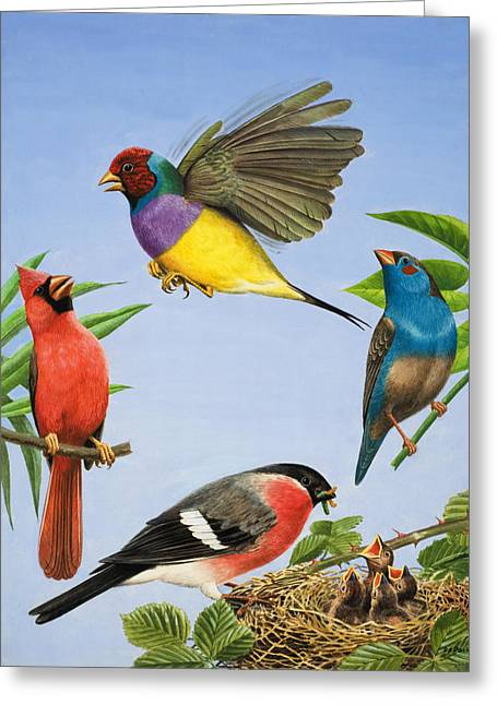 Hovering Greeting Cards - Tropical Birds Greeting Card by RB Davis