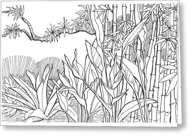 Bromeliad Drawings Greeting Cards - Tropical Blend Greeting Card by David Burkart