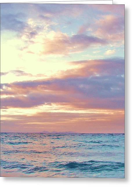 Just Because Greeting Cards - Tropical Dreaming Greeting Card by Margaret Bobb