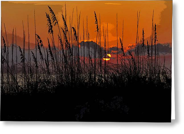 Oats Digital Greeting Cards - Tropical evening Greeting Card by David Lee Thompson