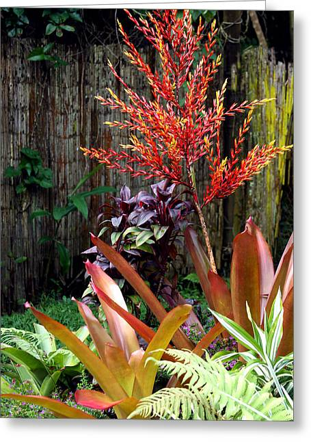 Bamboo Fence Greeting Cards - Tropical Garden Greeting Card by Karon Melillo DeVega