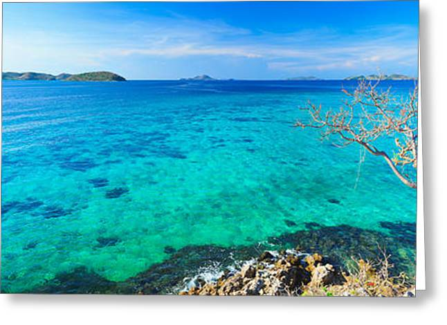 Tree Roots Greeting Cards - Tropical lagoon panorama Greeting Card by MotHaiBaPhoto Prints