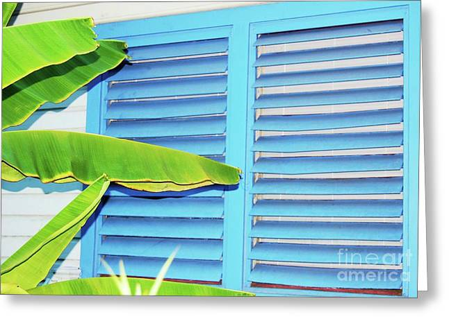Banana Plants Greeting Cards - Tropical Shutters Greeting Card by Debbi Granruth