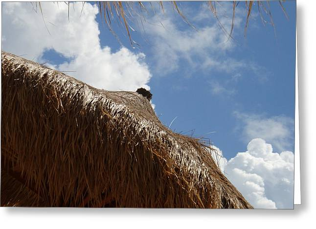 Tropical Straw Umbrella Greeting Card by Kimberly Perry
