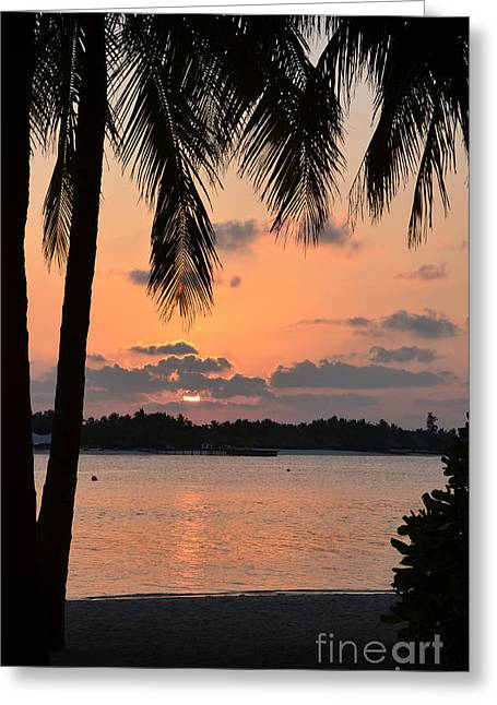 Beach Photos Greeting Cards - Tropical Sunset Greeting Card by Corinne Rhode