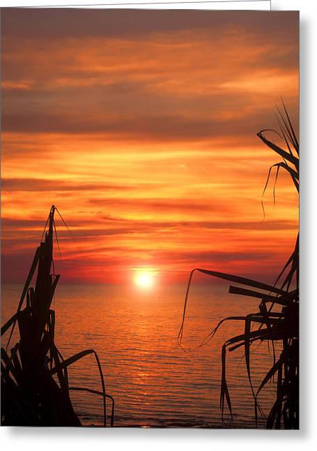 Tropical Sunset V6  Greeting Card by Douglas Barnard