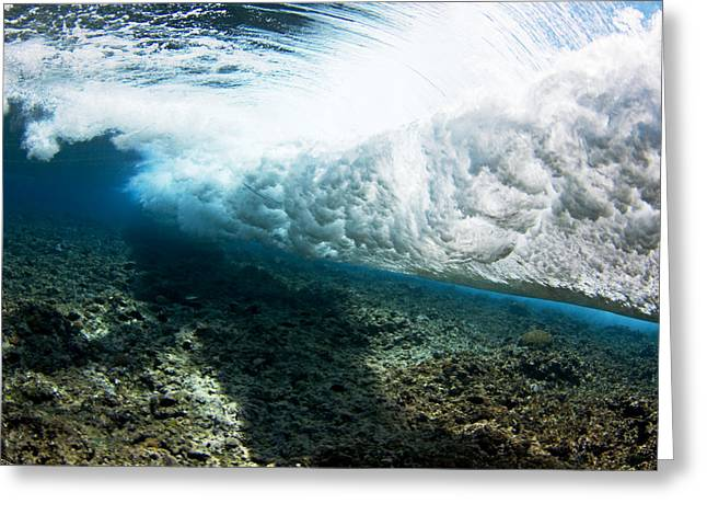 Unique View Greeting Cards - Tropical Wave Curl Greeting Card by Dave Fleetham - Printscapes