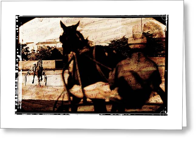 Horse Whip Digital Art Greeting Cards - Trotting 1 Greeting Card by Pedro Cardona