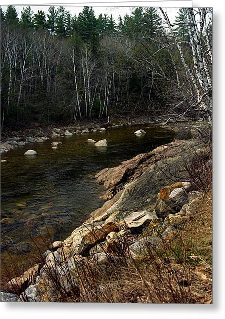 Trout Fishing Greeting Cards - Trout Fishery Greeting Card by Skip Willits