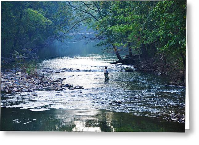Fishing Creek Greeting Cards - Trout Fishing in America Greeting Card by Bill Cannon