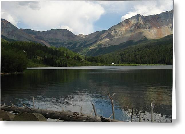 Trout Lake Logs Greeting Card by Matthew Parks