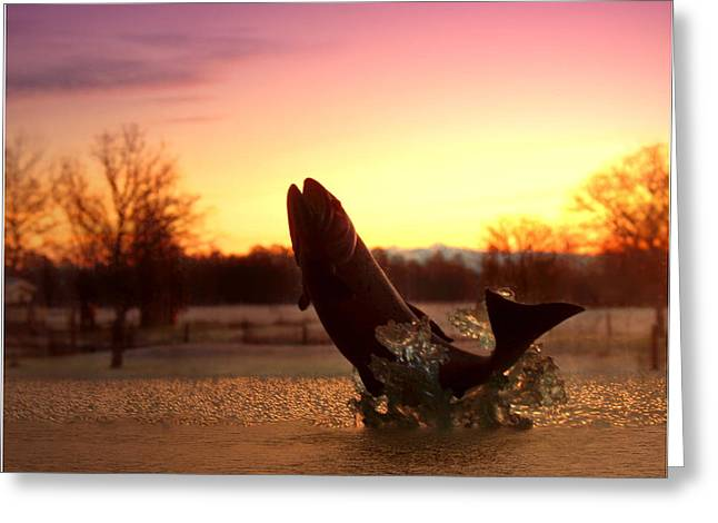 Trout Greeting Card Greeting Cards - Trout Sunrise Greeting Card by Joyce Dickens