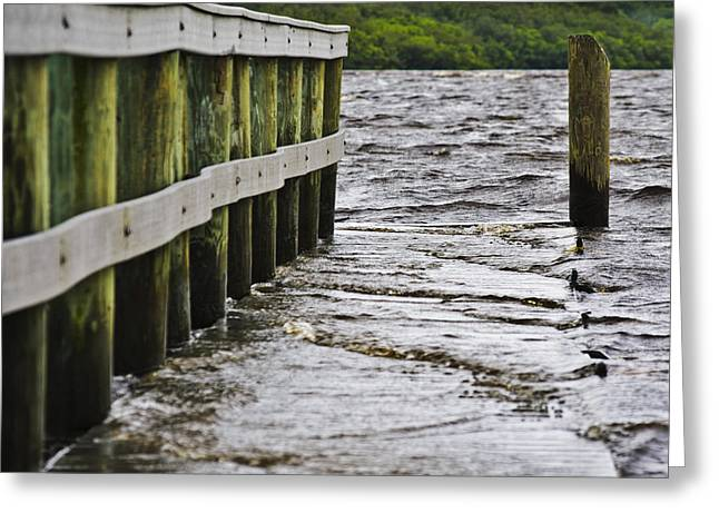 River Flooding Greeting Cards - TS Debby Alafia Boat Dock After The Storm Greeting Card by Lawrence Ott