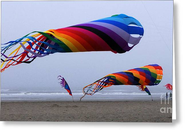 Kites Festival Greeting Cards - Go Fly A Kite 9 Greeting Card by Bob Christopher