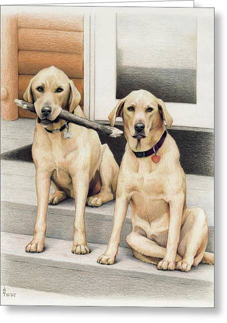 Puppies Drawings Greeting Cards - Tucker and Lily Greeting Card by Amy S Turner