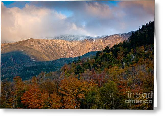 Appalachian Greeting Cards - Tuckermans Ravine in Autumn Greeting Card by Susan Cole Kelly