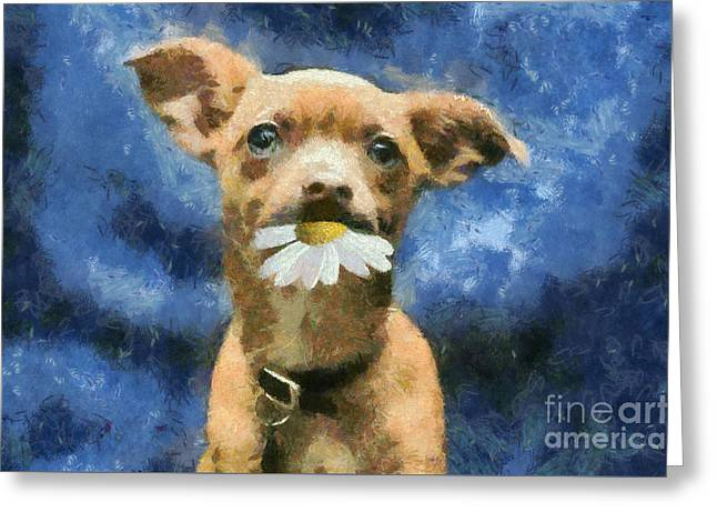 Tuffy Greeting Card by Aimelle
