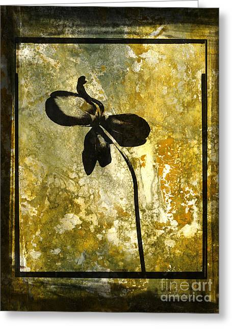 Breeds Digital Art Greeting Cards - Tulip Greeting Card by Bernard Jaubert