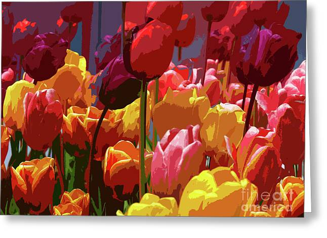 Spring Bulbs Digital Art Greeting Cards - Tulip Confusion Greeting Card by Sharon  Talson