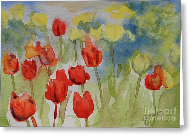 Fields Of Flowers Greeting Cards - Tulip Field Greeting Card by Gretchen Bjornson