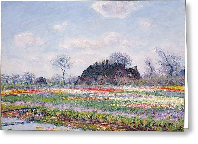 Near Greeting Cards - Tulip Fields at Sassenheim Greeting Card by Claude Monet