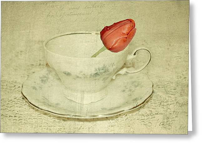 Flower Still Life Prints Photographs Greeting Cards - Tulip In A Cup Series II Greeting Card by Kathy Jennings