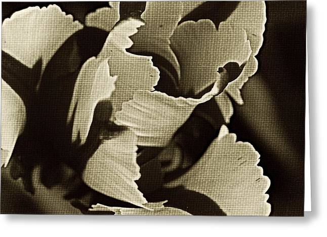 Brown Tones Greeting Cards - Tulip Whirled  Greeting Card by Chris Berry