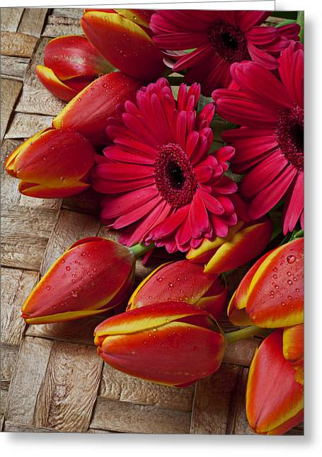 Tulip Blossom Greeting Cards - Tulips and red daisies  Greeting Card by Garry Gay
