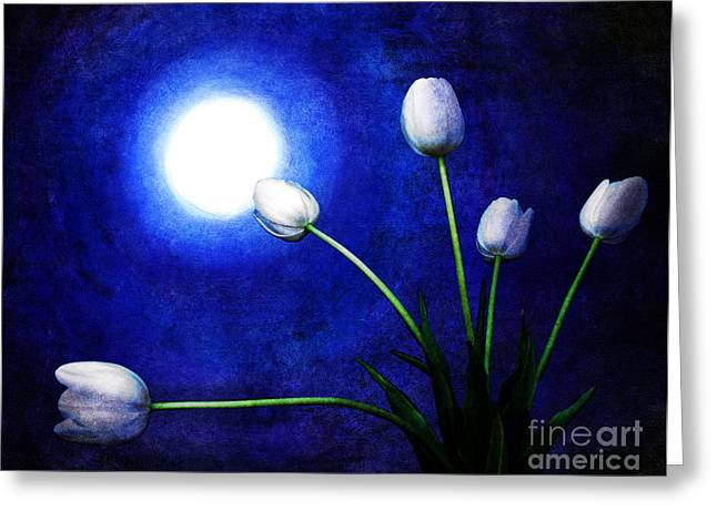 Gothic Surreal Greeting Cards - Tulips in Blue Moonlight Greeting Card by Laura Iverson
