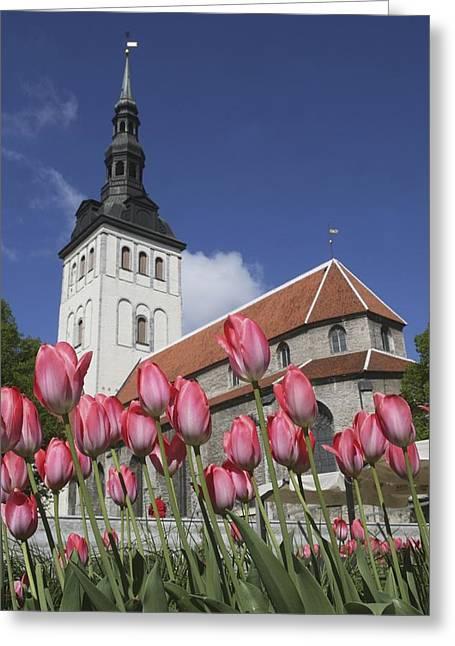 Tallinn Greeting Cards - Tulips Outside Niguliste Church Greeting Card by Axiom Photographic