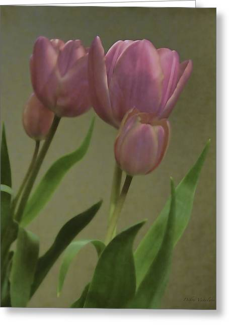 Tulips Reflections Greeting Card by Debra     Vatalaro