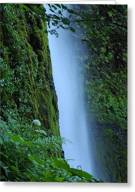Ruth Gorge Greeting Cards - Tunnel Falls Greeting Card by R Lynley