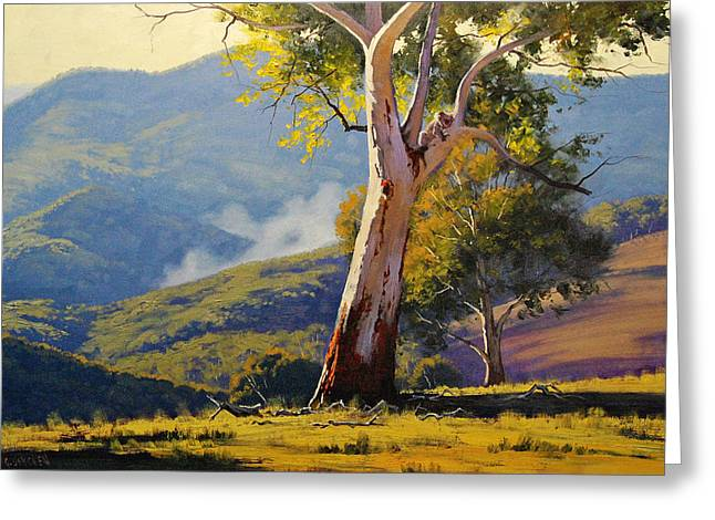 Eucalyptus Trees Greeting Cards - Turon Gum Tree Greeting Card by Graham Gercken